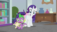 Spike -emergency meeting in Canterlot!- S8E25