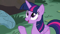 Twilight Sparkle -anypony who lives in a tree- S7E20