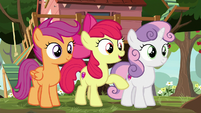 "Apple Bloom ""well, now you do"" S8E12"
