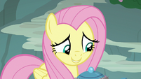 """Fluttershy """"surprised you picked me"""" S8E4"""