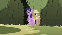 Twilight and Applejack at the entrance S2E01