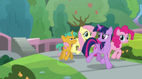 Twilight walks with Fluttershy, Pinkie, and Snails S9E15
