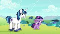 Young Shining Armor winks at Twilight S9E4