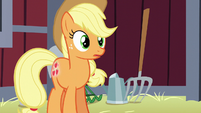 Applejack listens to Apple Bloom's worry-talk S5E17