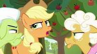 Applejack skeptical of Goldie Delicious S9E10