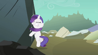 Filly Rarity smacks into rock S1E23