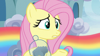 """Fluttershy """"since before you were born"""" S6E11"""