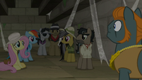 Ponies confused by Rogue's statement S9E21
