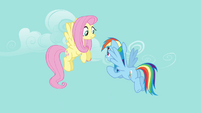 Rainbow Dash asking about the next book S4E04