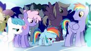 S03E12 Młoda Rainbow Dash jest załamana