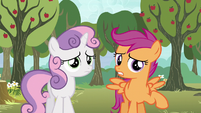 """Scootaloo """"we both sort of got our cutie marks"""" S5E4"""