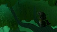 Zecora on the tree branch in the dark S5E26