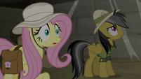 Fluttershy coming up with an idea S9E21