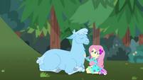 Fluttershy petting a blue llama CYOE11b