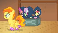 Sweetie Belle tells Peachy Pie --break a leg!-- S1E18