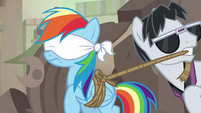 Withers ties up and blindfolds Rainbow Dash S7E18