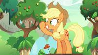 Applejack rubbing her nose S8E23