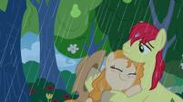 Pear Butter hugs Bright Mac in the rain S7E13