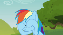 Rainbow Dash wiping her eyes S3E03