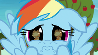 Rainbow pouting desperately at Applejack S8E5