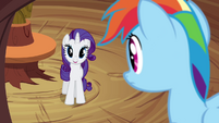 "Rarity ""don't you mean 'inside an enigma'"" S4E18"