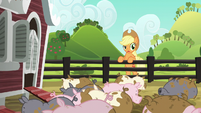 "Applejack ""a leaky pipe or doin' too much laundry"" S6E10"
