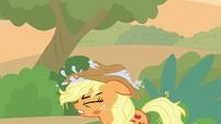 Applejack puts her wet hat on her head S8E23