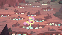 Fluttershy reading to the dragon eggs S9E9
