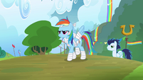 Rainbow Dash and Soarin walking proud S4E10