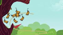 Butterflies losing in a tug of war S2E22
