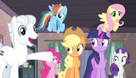 Double Diamond introduces the Mane Six S5E1