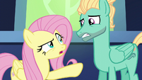 """Fluttershy """"you're going to work"""" S6E11"""