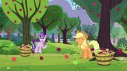 S05E26 Starlight i Applejack zbierają jabłka