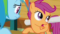 """Scootaloo """"time for me to explore"""" S8E20"""