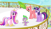 Spike accepts Cadance's request S4E24