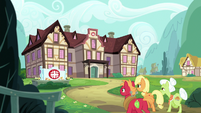 AJ, Big Mac, and Granny approach the Ponyville Hospital S6E23