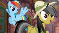 "Daring Do ""...has an Alicorn on it!"" S6E13"