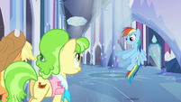 Rainbow Dash -and we're walking...- S03E12