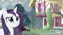 Rarity in the rain S3E13