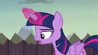 "Twilight ""backup plan to the backup plan"" S5E23"