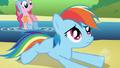 Wings and Cutie Mark Rainbow Dash Error