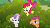 "Apple Bloom ""what do you think that griffon wants?"" S6E19"