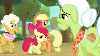 """Apple Bloom """"what does that mean?"""" S9E10"""