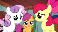 Cutie Mark Crusaders don't know what to do S5E6