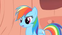 Rainbow Dash hesitates S1E16
