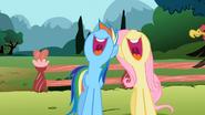 S02E07 Rainbow i Fluttershy śpiewają razem