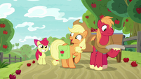 Applejack ready to hunt with Apple Bloom S9E10