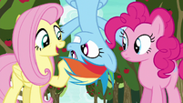 """Fluttershy """"seem to know a lot about this game"""" S6E18"""