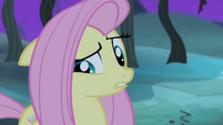 """Fluttershy """"yes I was or yes I wasn't"""" S4E07"""