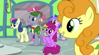 Ponies attracted by Mr. Breezy's new advertising S7E19